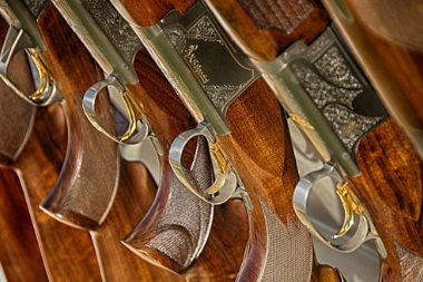 Loi sur les armoires à fusils : que devez-vous savoir ?
